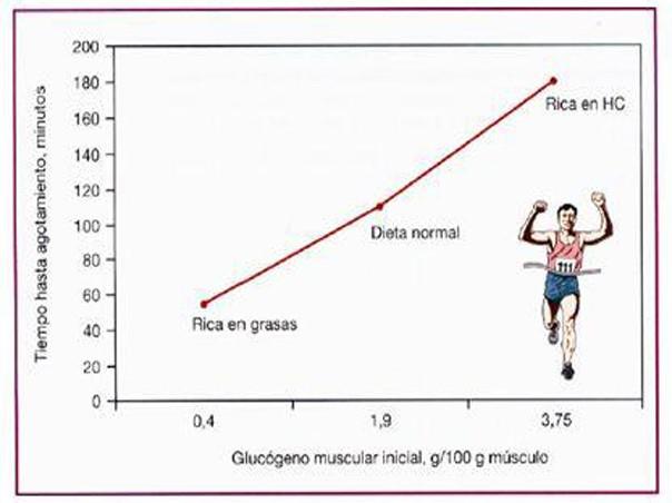 macronutrientes en deportsitas en perdida de peso
